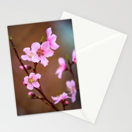 Peach Blossom - Pink Peach Blossoms on Spring Day in Oklahoma Stationery Cards