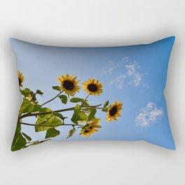 SF4 Rectangular Pillow