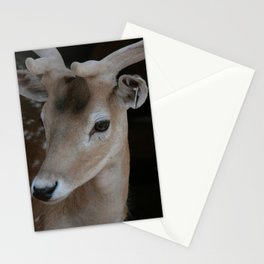 Young deer, portrait Stationery Cards