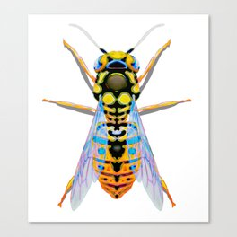 Yellow Wasp Canvas Print
