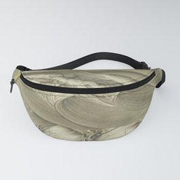 Wishes Fanny Pack