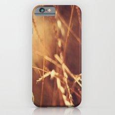 Golden Slim Case iPhone 6s