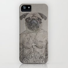 2 pug iPhone (5, 5s) Slim Case