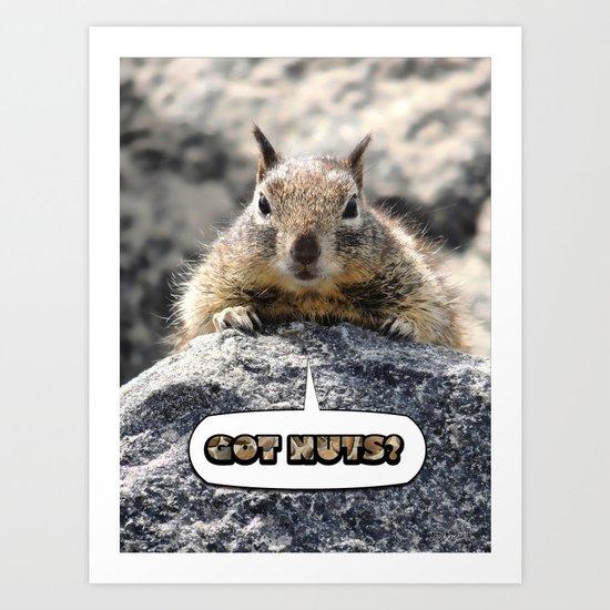 Got Nuts? Art Print
