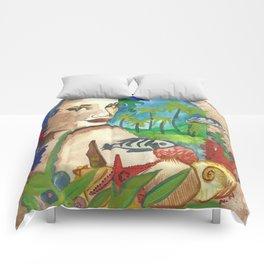 Calypso Comforters