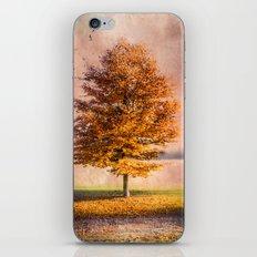 A sunny autumn day iPhone & iPod Skin