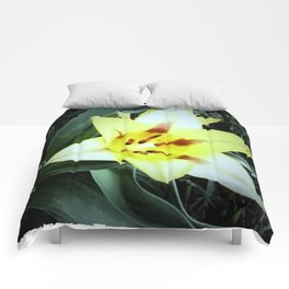 Cheerful Lilly Comforters