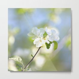 Apple Tree Branch With Flowers - Spring Mood #decor #society6 #buyart Metal Print