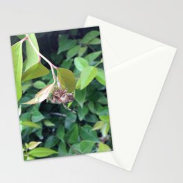 Look Into My Magical Orb I Stationery Cards