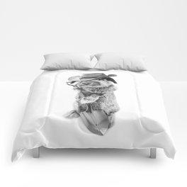 JOHNNY CARRO Comforters