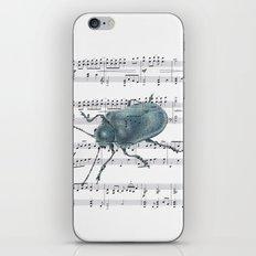 Music Beetle iPhone & iPod Skin