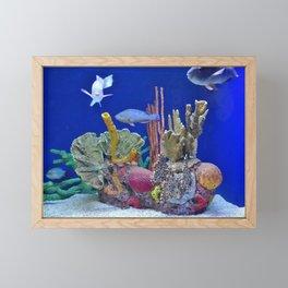 Looking at You Framed Mini Art Print