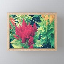 Fiery Flower Framed Mini Art Print