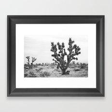joshua tree bw Framed Art Print