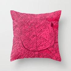 QASD213 Throw Pillow