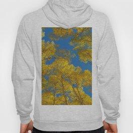 Aspen Trees Against Sky Hoody