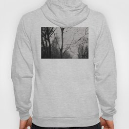 the silence of the forest ... Hoody