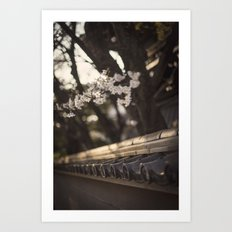 Sakura in Kyoto, Higashiyama 2015 Art Print