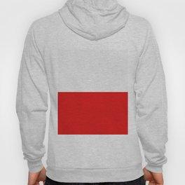Poland flag Hoody