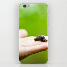 a slug in the hand iPhone & iPod Skin