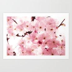 Spring Sky Flora Pattern Art Print
