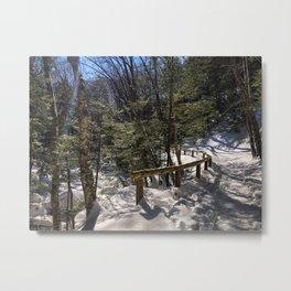 Sabbaday Brook Trail NH (2) Metal Print
