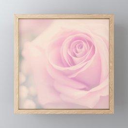 Vintage rose - Beautiful lightpink flower - Roses Framed Mini Art Print