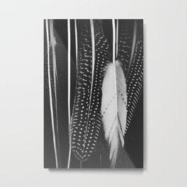 Boho Feathers Metal Print