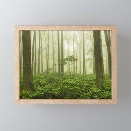 Dreaming of Appalachia - Nature Photography Digital Landscape Framed Mini Art Print