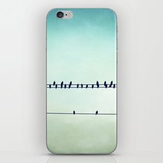 Aqua Birds on Wire Photography, Teal Bird on Wires, Turquoise Nature Art iPhone & iPod Skin
