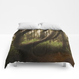 The Twisted Tree Comforters