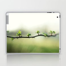 Wild Rose in Spring Laptop & iPad Skin