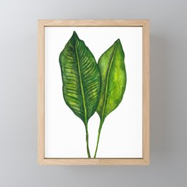 Tropical Collection part 1 Framed Mini Art Print