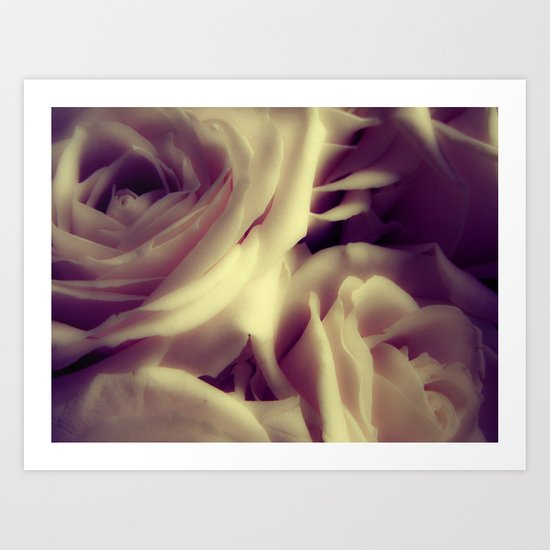 {English Rose} Art Print
