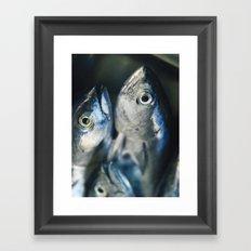 Tuna fish - still life - fine art - photo - print, high quality,macro, interior design, wall decor Framed Art Print