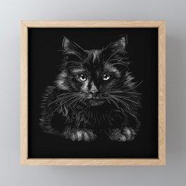 Black cat Framed Mini Art Print