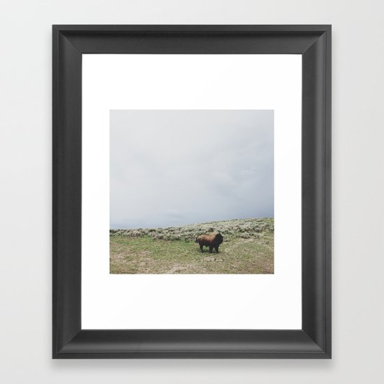 Hillside Bison Framed Art Print
