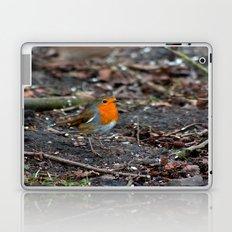 Winters Robin Laptop & iPad Skin