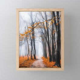 To Travel The Path Unknown Framed Mini Art Print