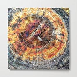 Tree Stump Ring Circle Metal Print
