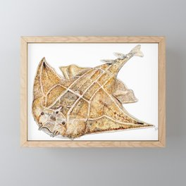 Angel shark Framed Mini Art Print