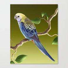 Pale-Headed Rosella Canvas Print