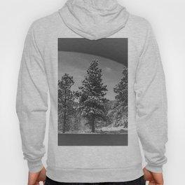 Snowy Pines Through the Explorers Window Hoody