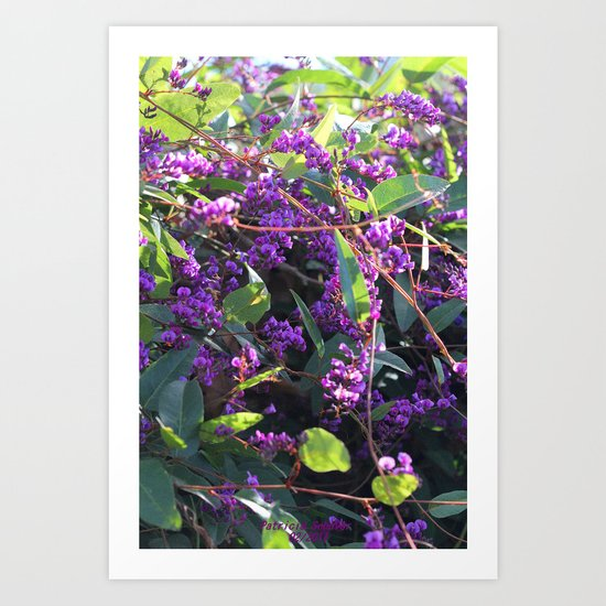 Christy's Garden 4 Art Print