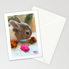 Bunny Eating Edible, Organic Flowers Stationery Cards