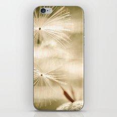 Coquette iPhone & iPod Skin