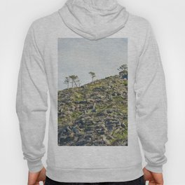 Mountains and Trees Hoody