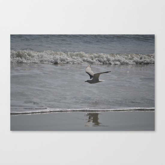 soaring above the wake Canvas Print