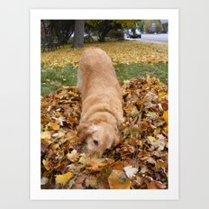 Playing in the Leaves Art Print