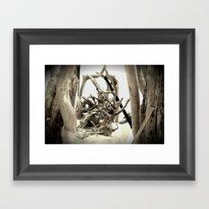 Driftwood (B&W) Framed Art Print